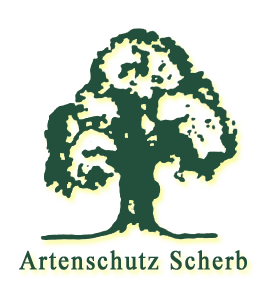 Artenschutz SCHERB - Opfingen